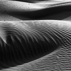 Dunes of Sand-Canvas-Front