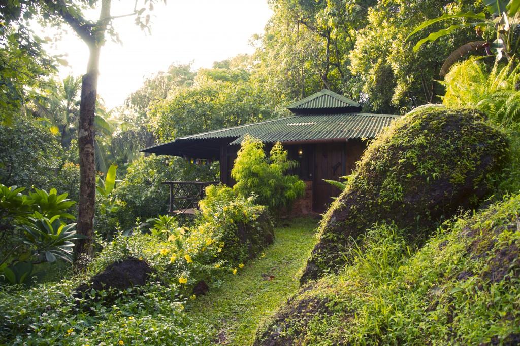 Goa-Olaulim Backyards