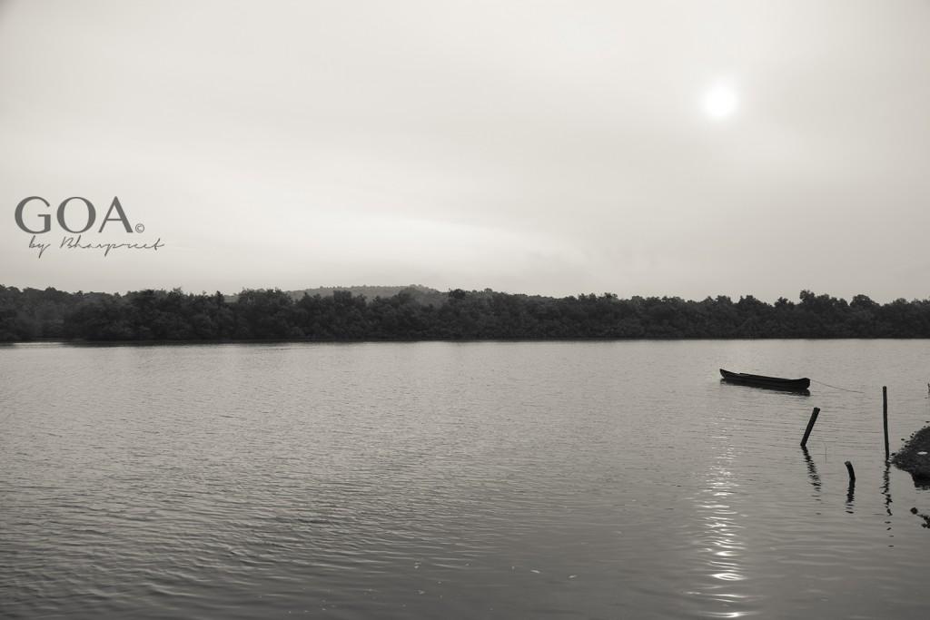 Goa-Mandovi river