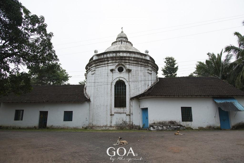 Goa Photography Trip to Divar Island
