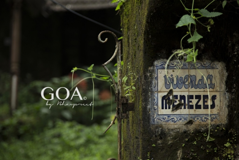 Goa Photography trip to Divar Island