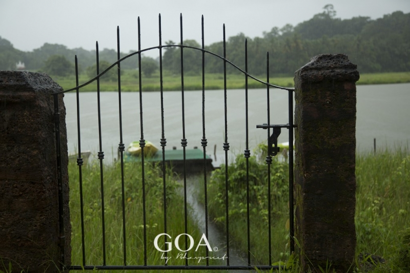 Goa-Olaulim Backyards