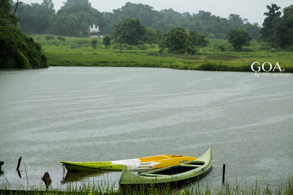 Goa-Olaulim Backyards-kayaks