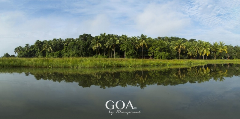 Goa-Olaulim Backyards-Kayaking